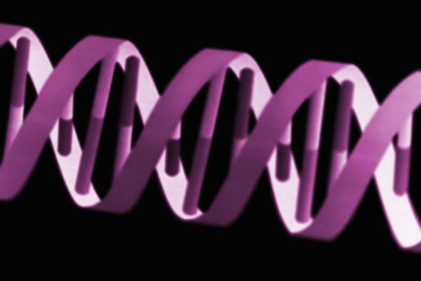 פיגור שכלי גנטי