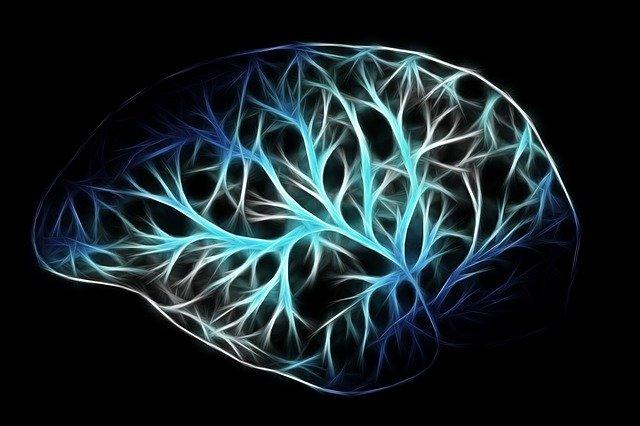 רשלנות באבחון גידול במוח