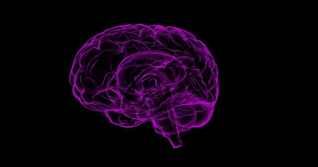 רשלנות רפואית באבחון דלקת קרום המוח